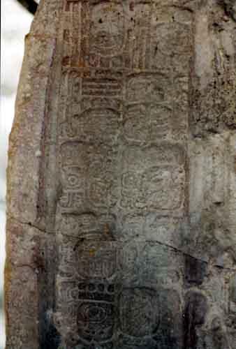 The Maya City Of Tikal Guatemala