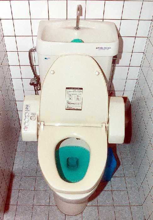 japanese toilets. Black Bedroom Furniture Sets. Home Design Ideas